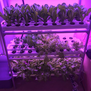 Small indoor farming