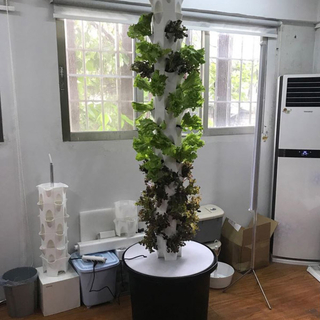 Hydroponic outdoor vertical tower system