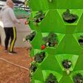 Hydroponic vertical twoer system for strawberry