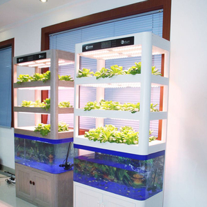 Home Aquaponic system